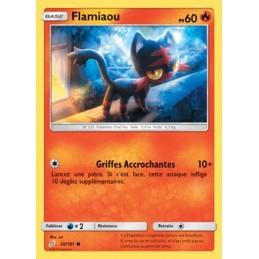 Flamiaou 20/181 PV60 Carte...