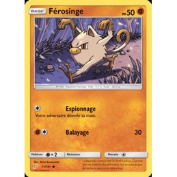 Férosinge 71/181 PV50 Carte...
