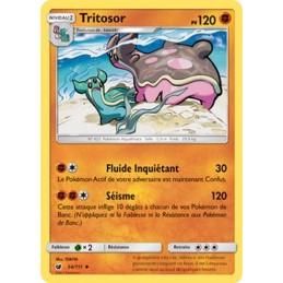 Tritosor 54/111 PV120 Carte...