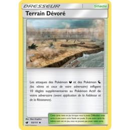 Terrain Dévoré 93/111 Carte...
