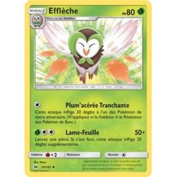 Efflèche 10/149 PV80 Carte...