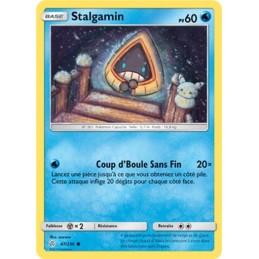 Stalgamin 47/236 PV60 Carte...
