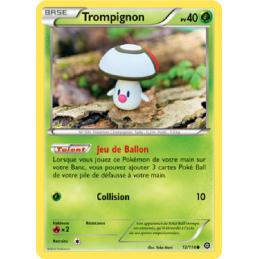 Trompignon 12/114 PV40...