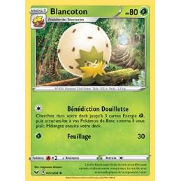 Blancoton 21/202 PV80 Carte...