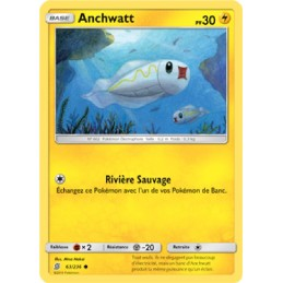 Anchwatt 63/236 PV30 Carte...