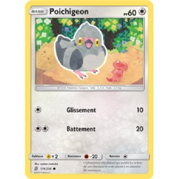 Poichigeon 174/236 PV60...