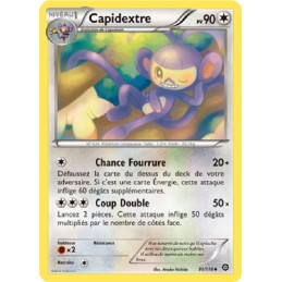 Capidextre 91/114 PV90...