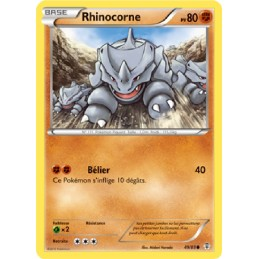 Rhinocorne 49/83 PV80 Carte...