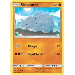 Rhinocorne 65/147 PV80...