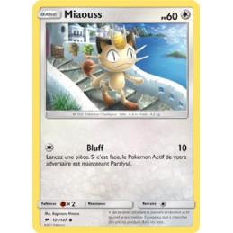 Miaouss 101/147 PV60 Carte...