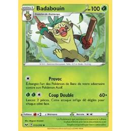 Badabouin 12/202 PV100...