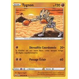 Tygnon 95/202 PV120 Carte...