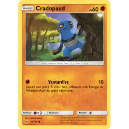 Cradopaud 63/131 PV60 Carte...