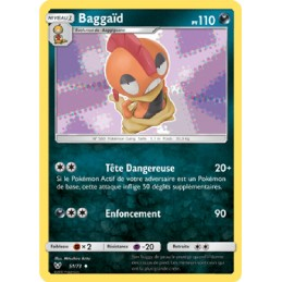 Baggaïd 51/73 PV110 Carte...