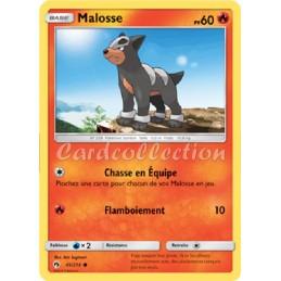 Malosse 45/214 PV60 Carte...