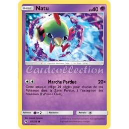 Natu 87/214 PV40 Carte...
