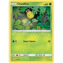 Chétiflor 1/145 PV60 Carte...