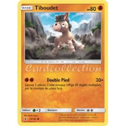 Tiboudet 75/145 PV80 Carte...