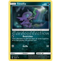 Ténéfix 80/145 PV60 Carte...
