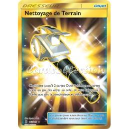 Nettoyage de Terrain 163/145  Carte Pokémon™ Dresseur Secrète Ultra rare Neuve VF