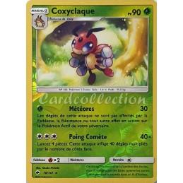 Coxyclaque 10/147 PV90...