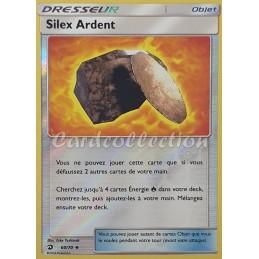 Silex Ardent 60/70 Carte Pokémon™ Dresseur reverse Neuve VF