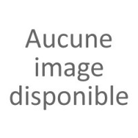 EB 4.5 - Destinées Radieuses